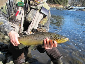 flyfish-trout2